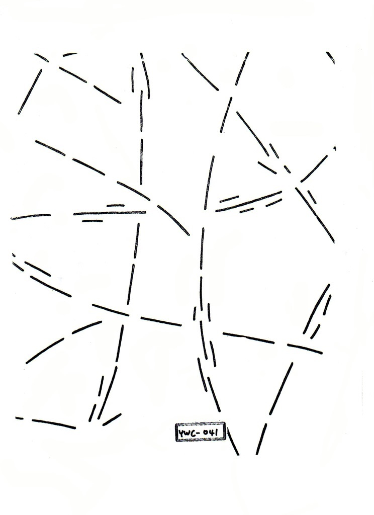 JY-041(1번거미줄)